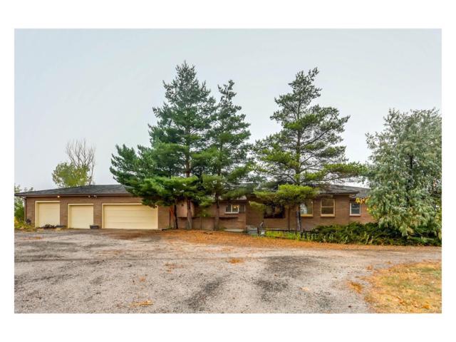 295 N Dutch Valley Road, Bennett, CO 80102 (MLS #3710193) :: 8z Real Estate