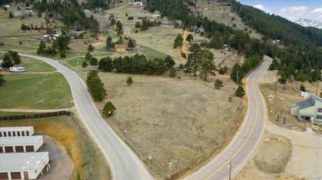 00 Saddleback Drive, Evergreen, CO 80439 (#3711583) :: Berkshire Hathaway Elevated Living Real Estate