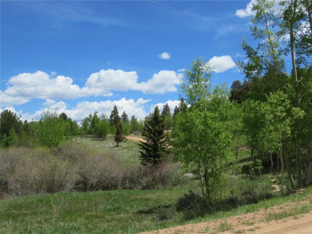 43 Eagle Rock Road, Florissant, CO 80816 (#3713486) :: The DeGrood Team