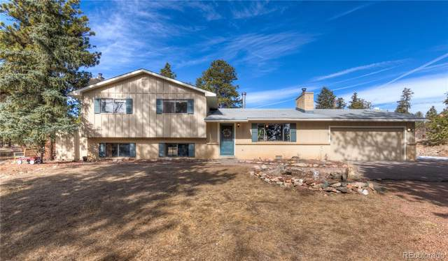 13253 S Omaha Street, Pine, CO 80470 (#3713864) :: The Brokerage Group