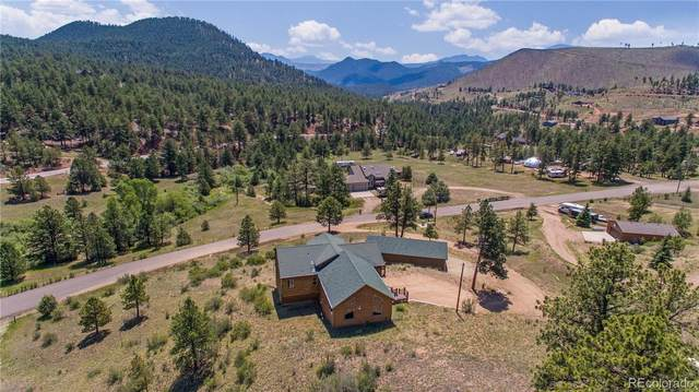 15459 Ouray Road, Pine, CO 80470 (#3715917) :: The DeGrood Team