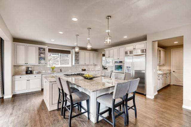 201 Maplehurst Point, Highlands Ranch, CO 80126 (#3718970) :: Compass Colorado Realty