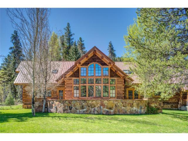 945 Douglas Trail, Almont, CO 81210 (MLS #3719370) :: 8z Real Estate