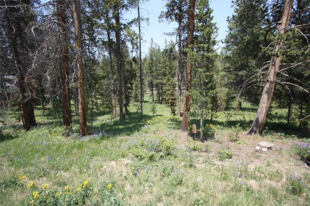 209 County Road 831, Fraser, CO 80442 (#3719906) :: The Galo Garrido Group