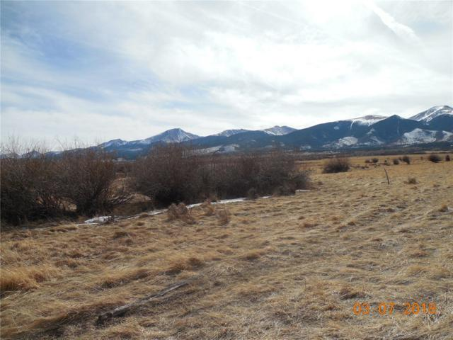 480 Lake Creek Lane, Cotopaxi, CO 81223 (MLS #3720382) :: Kittle Real Estate