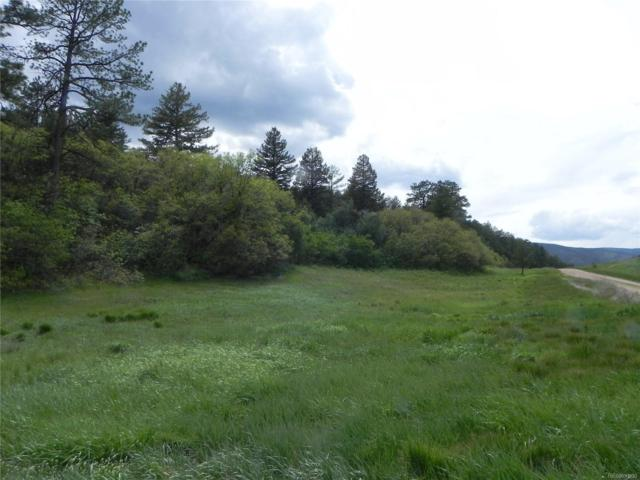 7707 Inca Road, Larkspur, CO 80118 (MLS #3720662) :: 8z Real Estate