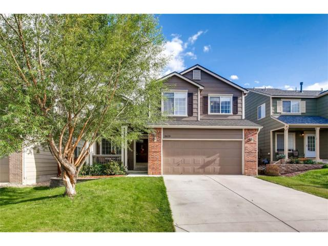 3628 Primrose Lane, Castle Rock, CO 80109 (#3723686) :: Colorado Team Real Estate