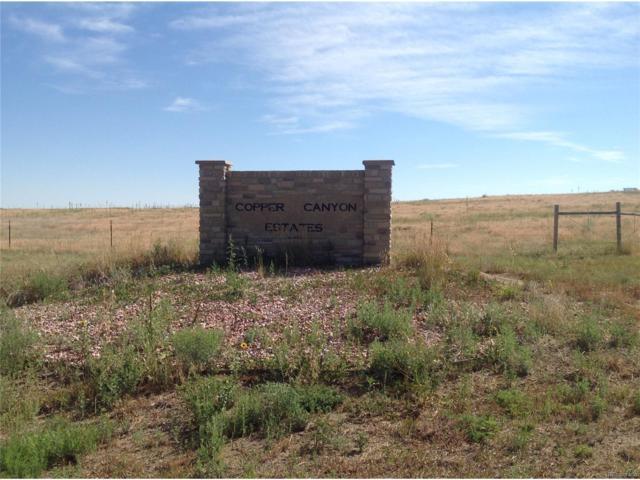 5 Copper Canyon Circle, Kiowa, CO 80117 (MLS #3723788) :: 8z Real Estate