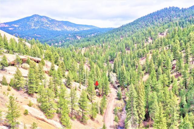 15771 S Elk Creek Road, Pine, CO 80470 (#3725429) :: Berkshire Hathaway Elevated Living Real Estate