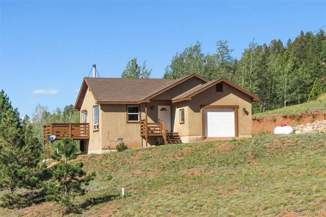 51 Copper Mountain Road, Cripple Creek, CO 80813 (#3729536) :: The Dixon Group