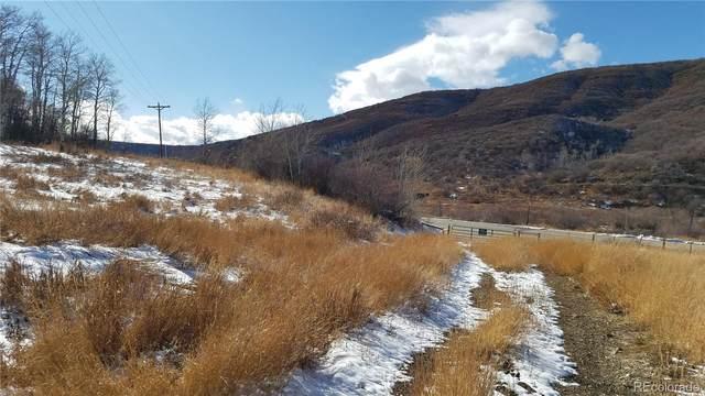 25995 Old Springs Road, Oak Creek, CO 80467 (#3733525) :: Arnie Stein Team | RE/MAX Masters Millennium