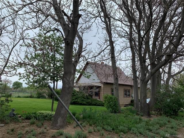 6620 York Street, Denver, CO 80229 (#3735576) :: Mile High Luxury Real Estate