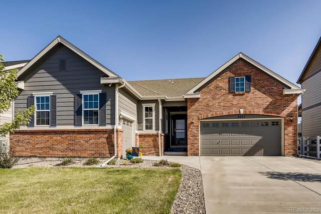 2847 Bluff Pointe Trail, Castle Rock, CO 80104 (#3736419) :: The Gilbert Group