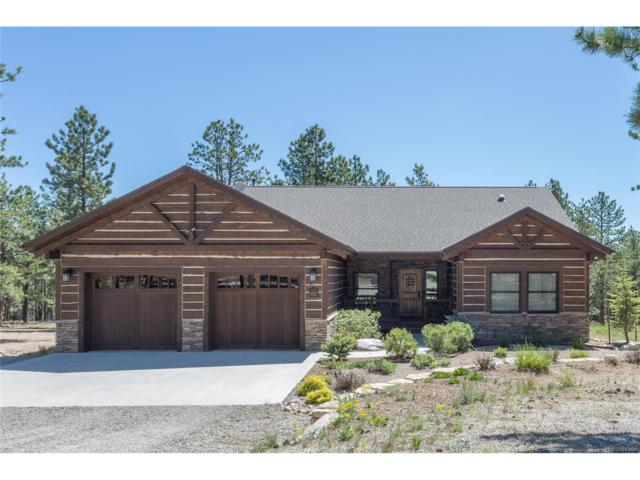 16103 Pine Grove Parkway, Buena Vista, CO 81211 (MLS #3739564) :: 8z Real Estate
