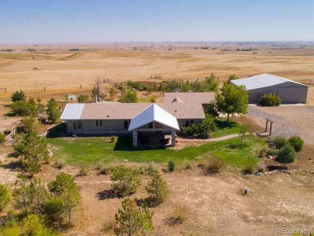 44850 County Road 25, Pierce, CO 80650 (#3745134) :: The DeGrood Team