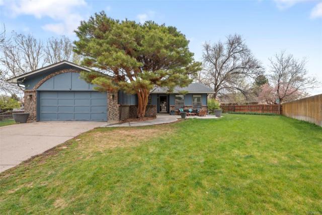 9695 Newton Street, Westminster, CO 80031 (MLS #3746426) :: 8z Real Estate