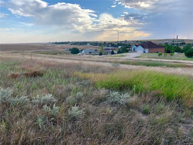 Arlyn Way, Wray, CO 80758 (MLS #3748069) :: 8z Real Estate