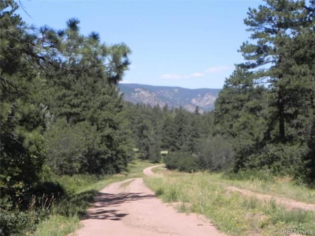 4926 Mohawk Drive, Larkspur, CO 80118 (#3748115) :: Symbio Denver