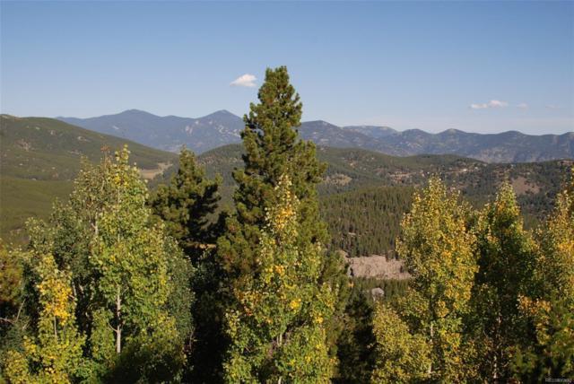 8492 Martin Lane, Conifer, CO 80433 (#3748772) :: House Hunters Colorado