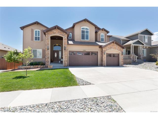 12763 Mt Oxford Place, Peyton, CO 80831 (MLS #3751043) :: 8z Real Estate