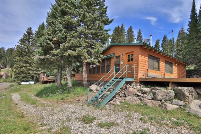 21675 Baron Lake Drive, Cedaredge, CO 81413 (#3754085) :: The Harling Team @ Homesmart Realty Group