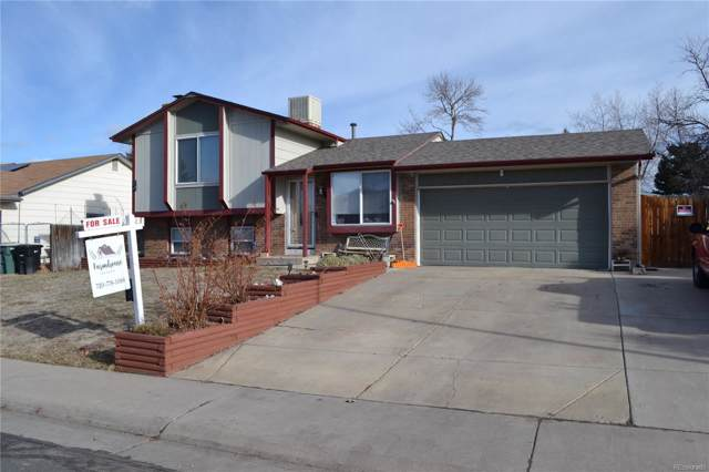 10740 Dexter Drive, Thornton, CO 80233 (MLS #3755904) :: Bliss Realty Group
