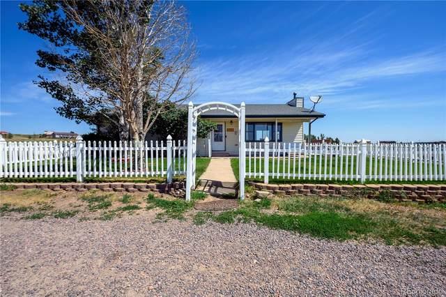2139 Appaloosa Trail, Elizabeth, CO 80107 (#3763466) :: Finch & Gable Real Estate Co.