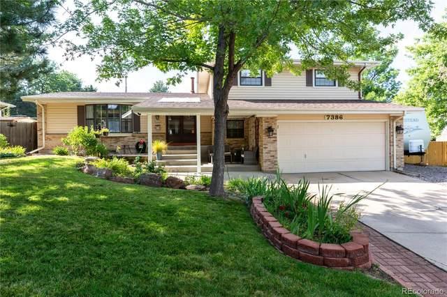 7386 S Bannock Drive, Littleton, CO 80120 (MLS #3763667) :: The Sam Biller Home Team