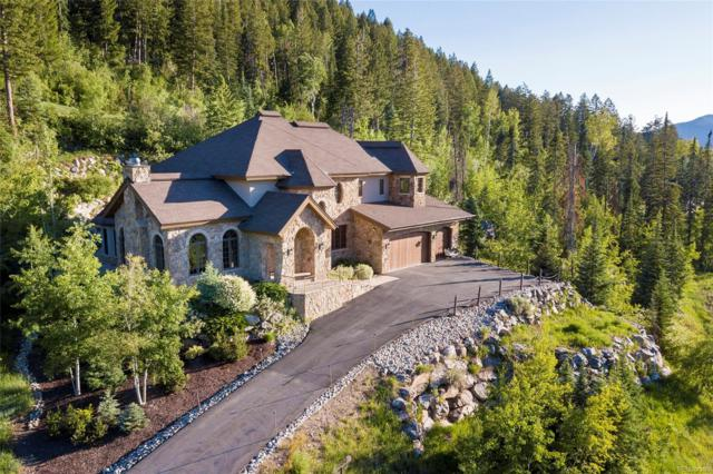 952 Steamboat Boulevard, Steamboat Springs, CO 80487 (#3764528) :: The Healey Group