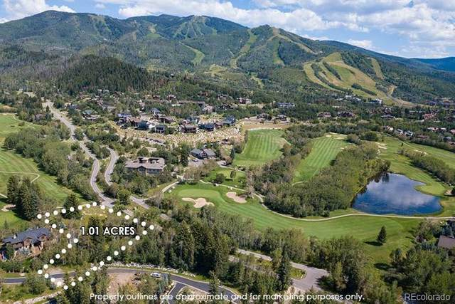 1729 Graystone Drive, Steamboat Springs, CO 80487 (#3765428) :: Wisdom Real Estate