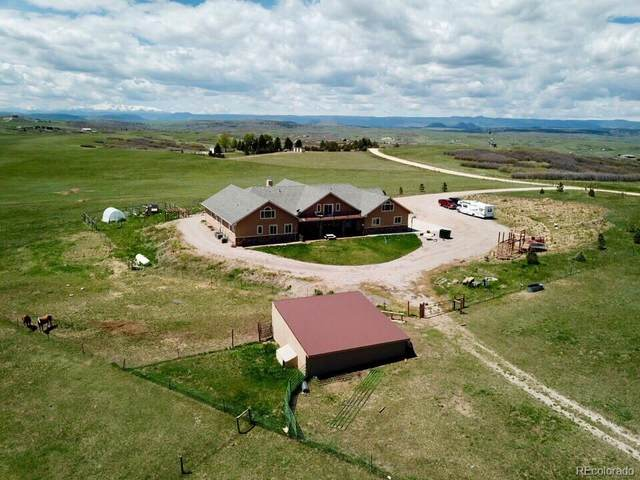 6233 Lake Gulch Road, Castle Rock, CO 80104 (#3768990) :: Venterra Real Estate LLC