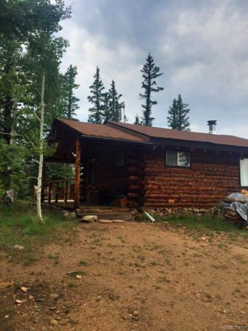 145 Long Rifle Way, Como, CO 80432 (#3770828) :: Structure CO Group