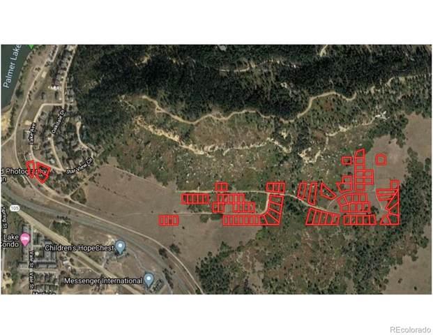 0 Lake Avenue, Palmer Lake, CO 80133 (#3770882) :: The Harling Team @ Homesmart Realty Group
