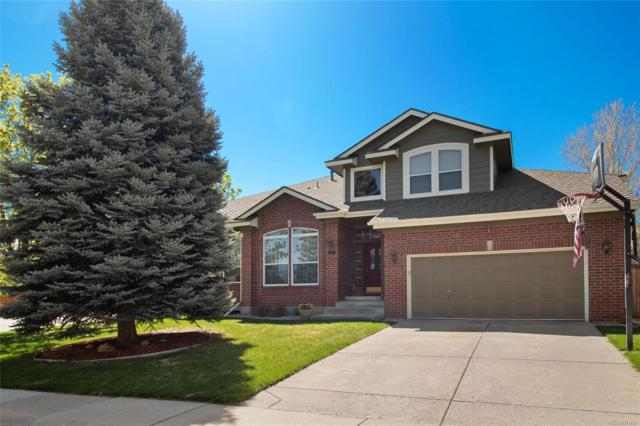 10406 Stonewillow Drive, Parker, CO 80134 (#3771582) :: The Heyl Group at Keller Williams