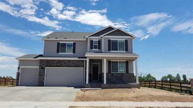 6282 Yellowtail Street, Timnath, CO 80547 (MLS #3772346) :: Bliss Realty Group