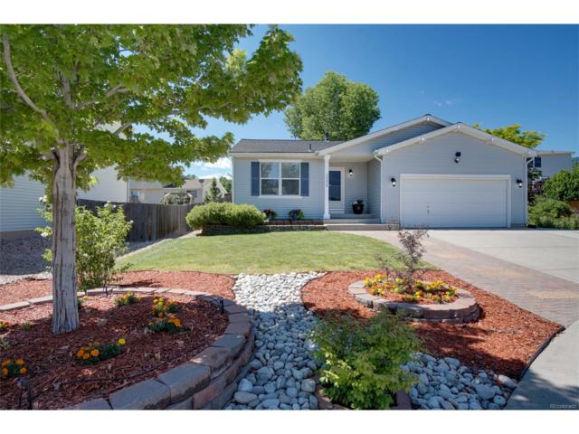 10458 Buckeye Street, Littleton, CO 80125 (#3775758) :: The City and Mountains Group