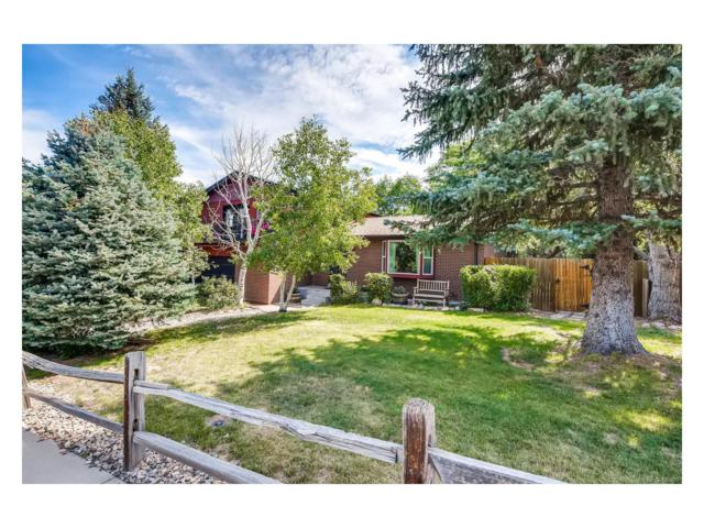 562 S Deframe Court, Lakewood, CO 80228 (MLS #3778024) :: 8z Real Estate