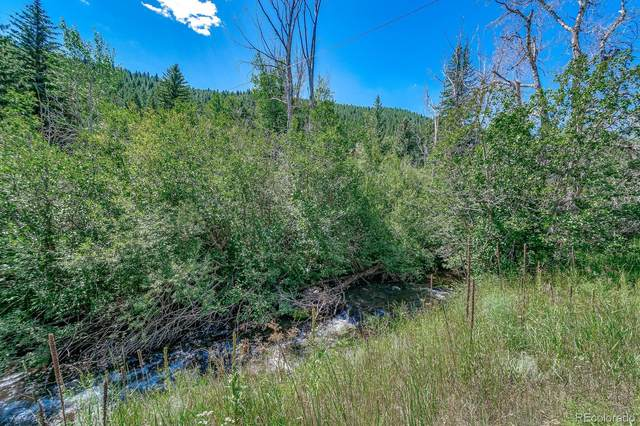 00000 Colorado Highway 103, Idaho Springs, CO 80452 (#3778220) :: Re/Max Structure