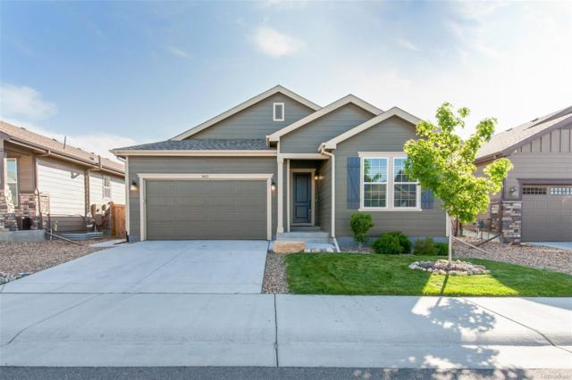 3415 Belltop Court, Castle Rock, CO 80104 (#3779507) :: The Heyl Group at Keller Williams