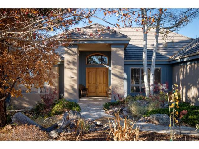 167 Glengarry Place, Castle Rock, CO 80108 (#3781659) :: RE/MAX Professionals