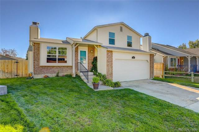 8376 Prairie Clover Way, Parker, CO 80134 (#3783171) :: You 1st Realty