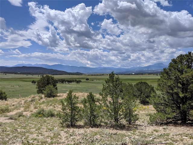 Lot 21, Nathrop, CO 81236 (#3784775) :: The DeGrood Team