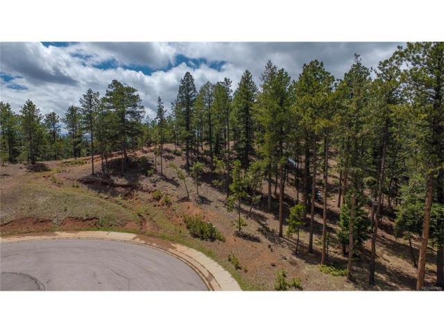 1200 Cottontail Trail, Woodland Park, CO 80863 (#3785824) :: Wisdom Real Estate