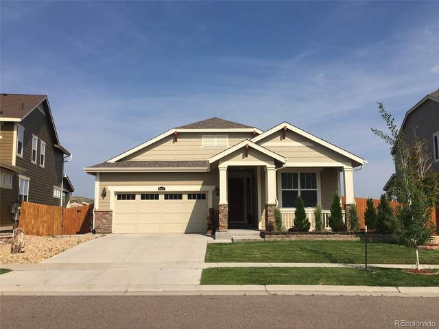 11817 Phoebe Street, Parker, CO 80134 (#3786883) :: Re/Max Structure
