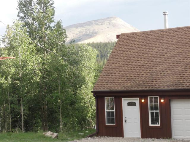 4550 Co Road 14 Road, Fairplay, CO 80440 (#3788803) :: Wisdom Real Estate