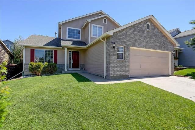 951 Quarterhorse Trail, Castle Rock, CO 80104 (#3790087) :: Venterra Real Estate LLC