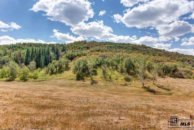 Bella Vista Circle, Steamboat Springs, CO 80487 (#3790572) :: The Healey Group