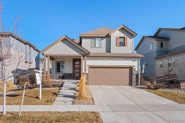 11058 Rifle Court, Commerce City, CO 80022 (#3791421) :: The HomeSmiths Team - Keller Williams