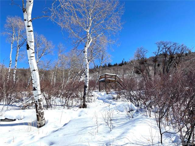 33650 Lone Pine Trail, Steamboat Springs, CO 80487 (#3794612) :: Re/Max Structure