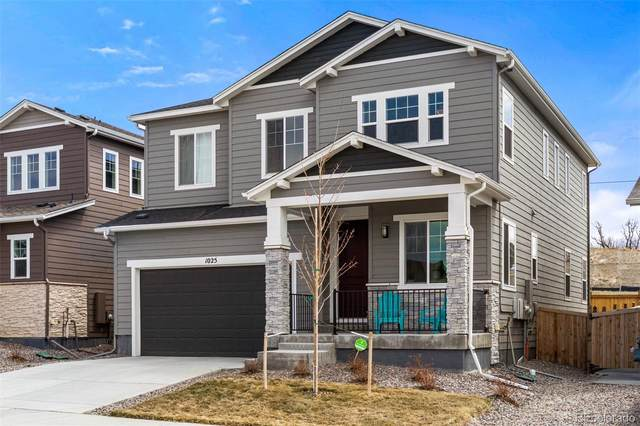 1025 Basalt Ridge Loop, Castle Rock, CO 80108 (#3796325) :: The Harling Team @ HomeSmart
